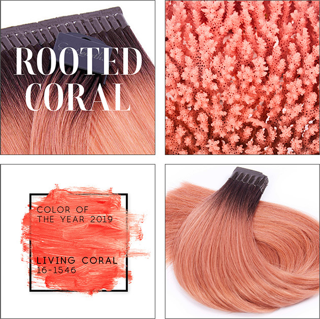 Rooted Coral (© Great Lengths)