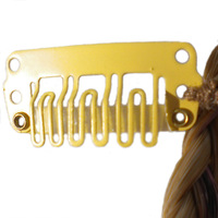 Beaded Braid Clip:  (© Great Lengths)